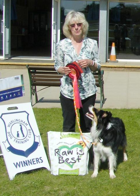 A dog pt2 winner